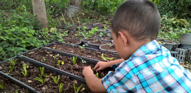 Escuelas sostenibles para mejorar el futuro cementos progreso guatemala
