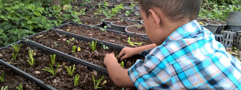 escuelas sostenibles cementos progreso guatemala portada