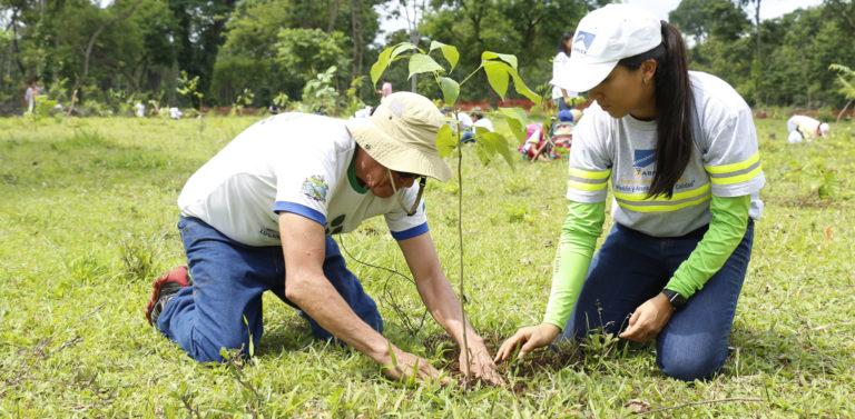 Agreca- Certificados en el sistema de gestión ambiental por la norma ISO 14001 2015 cempro cementos progreso guatemala