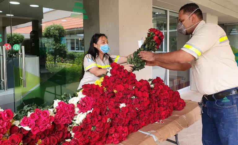 Las flores de exportación de San Juan Sacatepéquez llegaron a buenas manos cempro cementos progreso