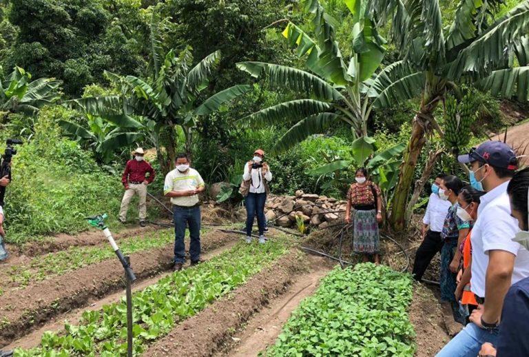 huertos comunitarios en San Martín Jilotepeque cempro cementos progreso guatemala