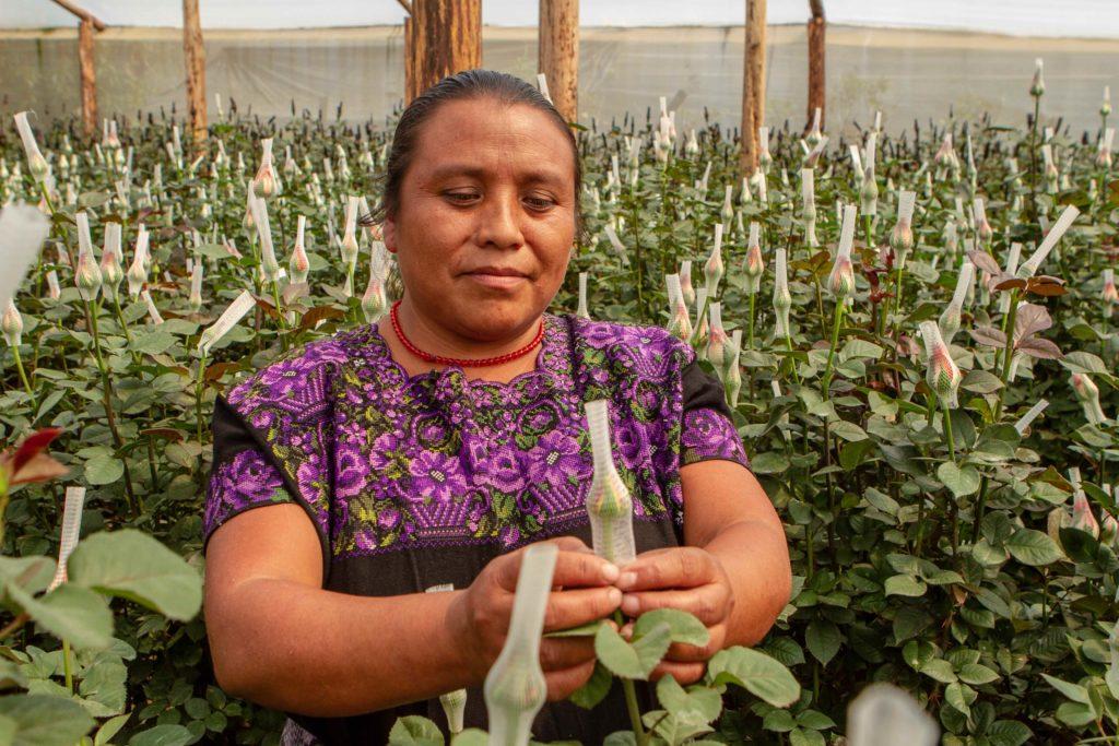 Un relacionamiento genuino para atender a las comunidades cempro guatemala