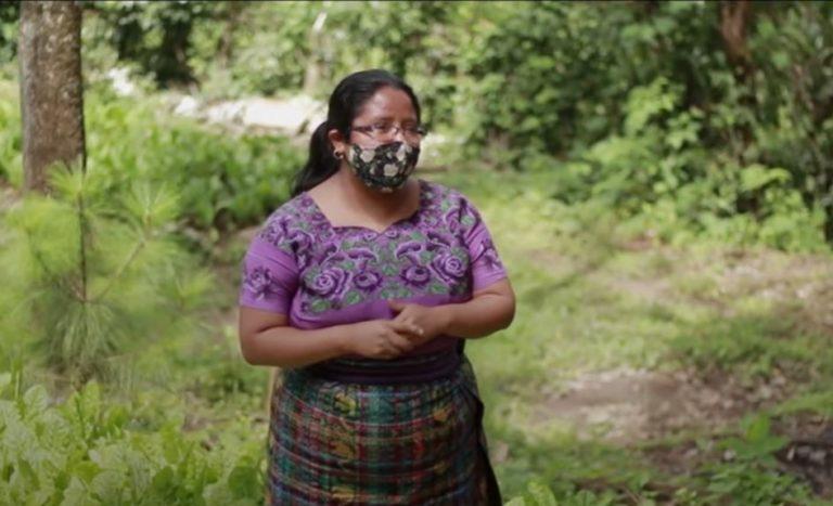 Chambear es Progreso guatemala