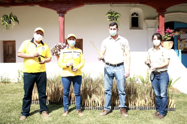 donacion de planta vetiver santa catarina pinula guatemala Progreso colaboracion
