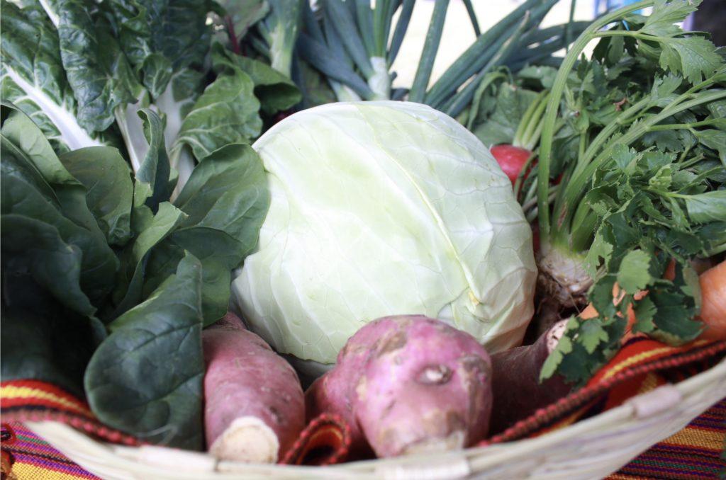 Verduras producidas por agricultores de San Juan Sacatepéquez