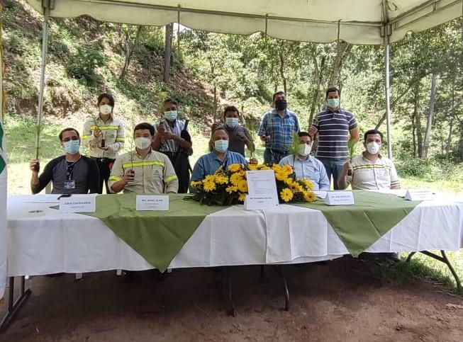reforestando con 106 mil arboles guatemala progreso latam