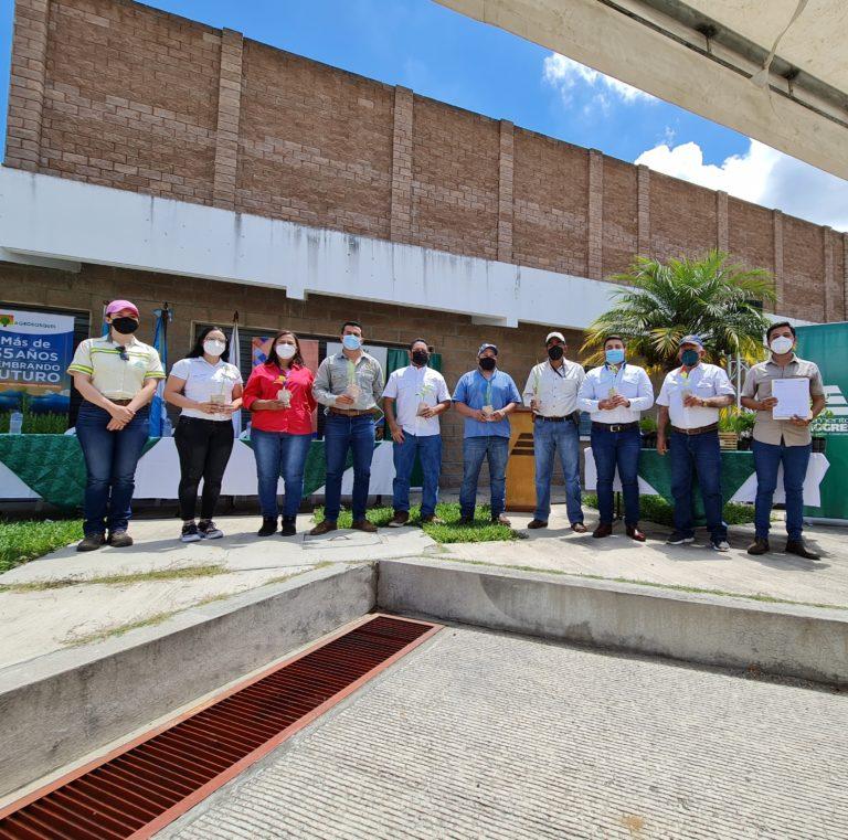 entregamos donativo de arboles para reforestar agroprogreso progreso latam guatemala